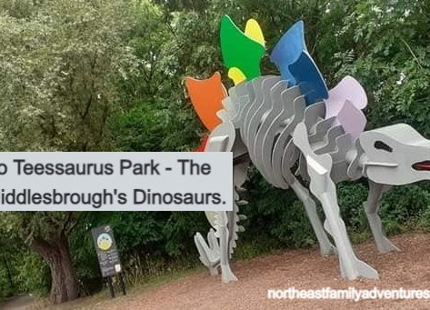 A Guide to Teessaurus Park - The Home of Middlesbrough's Dinosaurs.