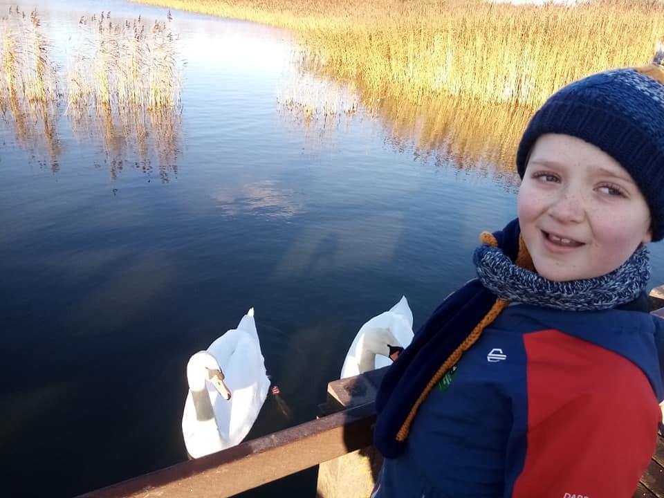 Rainton Meadows Nature Reserve where to feed the ducks