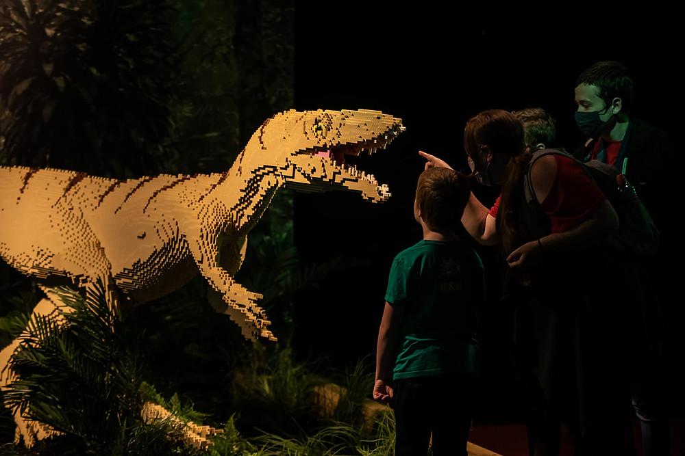 Lego Dinosaur Newcastle