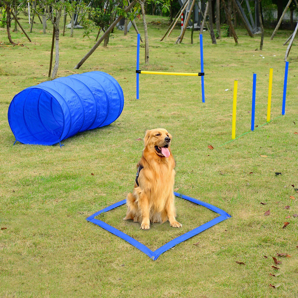 Agility training set