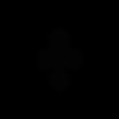 Icons_shapingsuccess-01.png