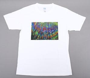 Tシャツ(切出し).jpg