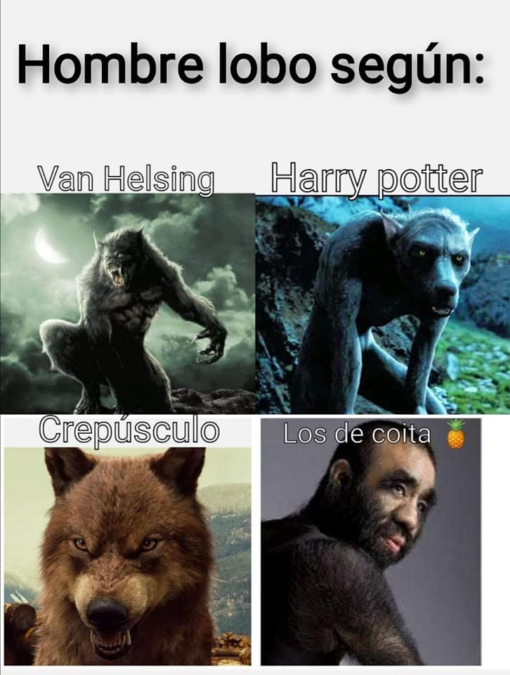 Meme del hombre lobo de Coita