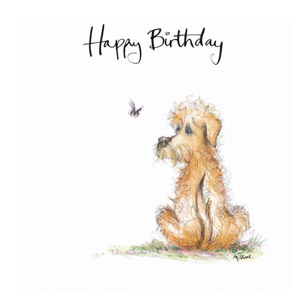 No2 Scruff Birthday