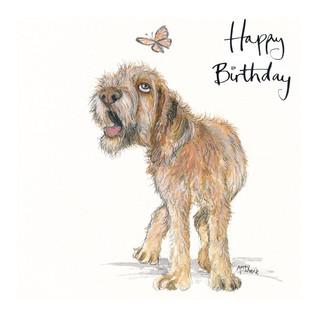 No4 Rufus Dog Birthday