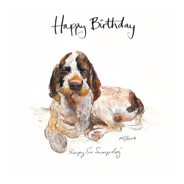 No10 Sleepy Sir Snoop Dog Birthday