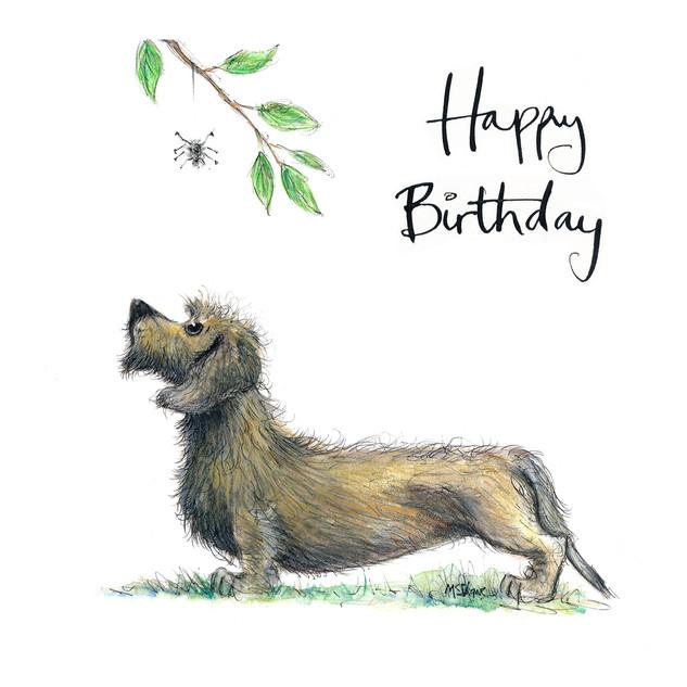 No5 Dexter Dachs Dog Birthday
