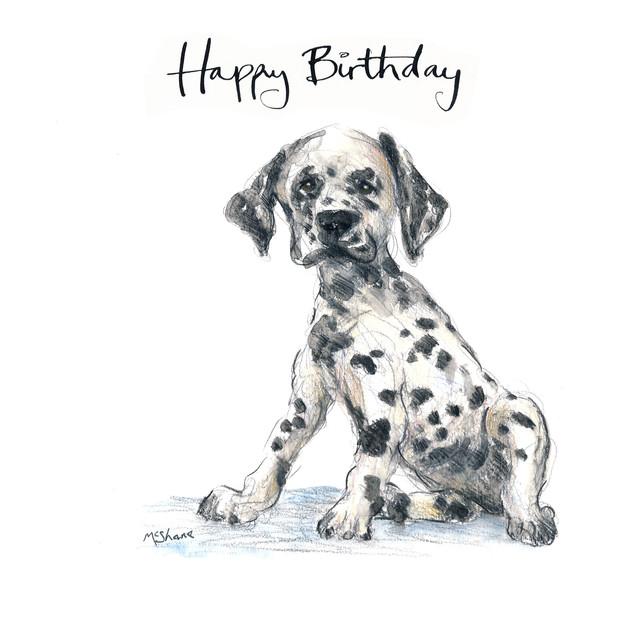 No11 Dotty Birthday