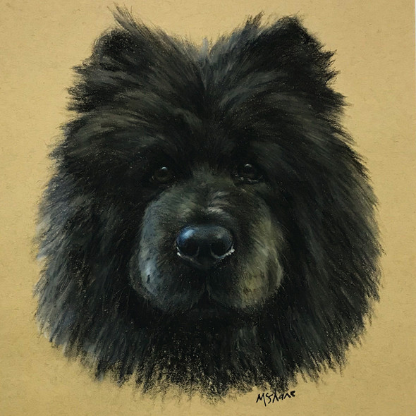 Chow. Pastel