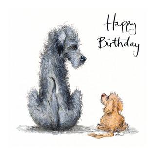 No6 Horatio & Hetty Birthday
