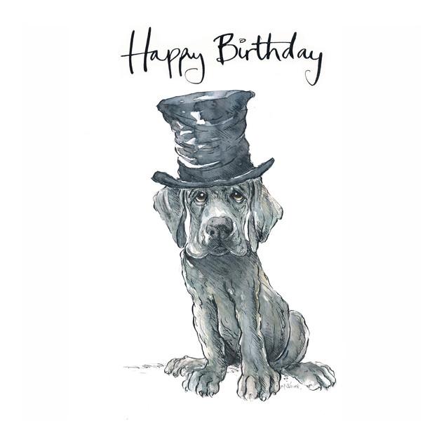 No7 Dufus the Dandy Dane Birthday