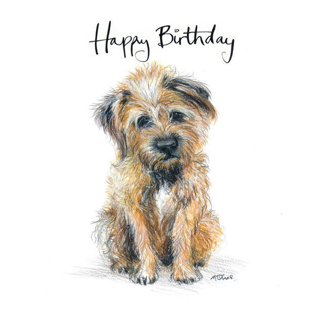 No12 Bojangles Birthday