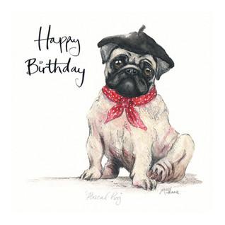 No3 Pascal Pug Birthday