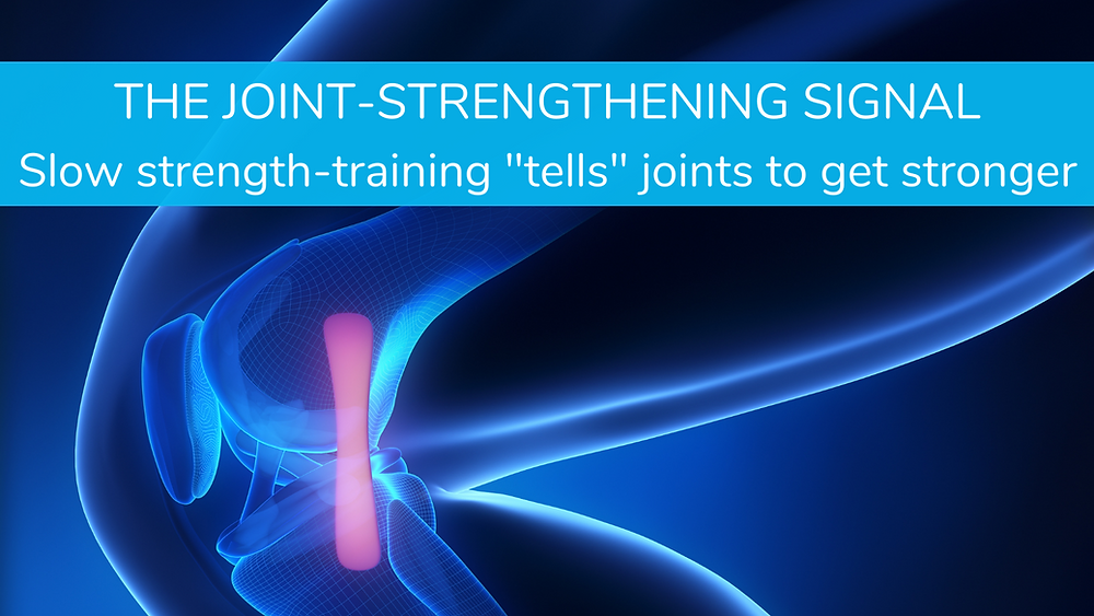 Chesapeake Personal Trainer for Joint Strengthening EDS Ehlers Danlos Knees Resistance Training