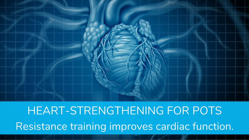Personal Training at StrengthSpace helps people with POTS build stronger hearts.