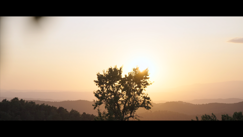 Bildschirmfoto 2021-07-15 um 14.39.03.png