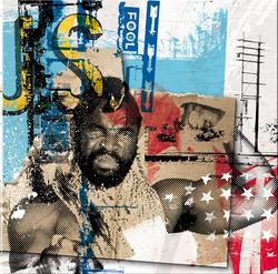 US Fool (50 x 50 cm)