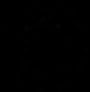 Pattond Studios Logo_Black_No Label_BOLD