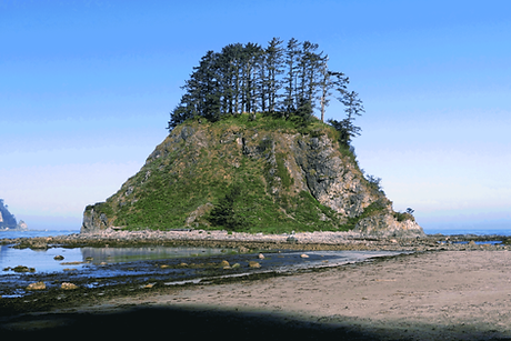 OlympicCoast5.png