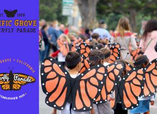 Butterfly Bazaar Gear Available Until...