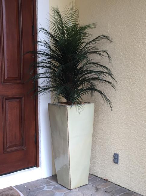 outdoor artificial plants 0479.JPG