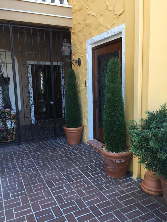 outdoor artificial plants 0632.JPG