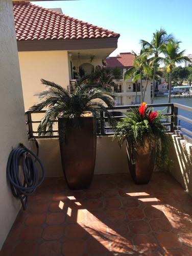 outdoor artificial plants 0609.JPG
