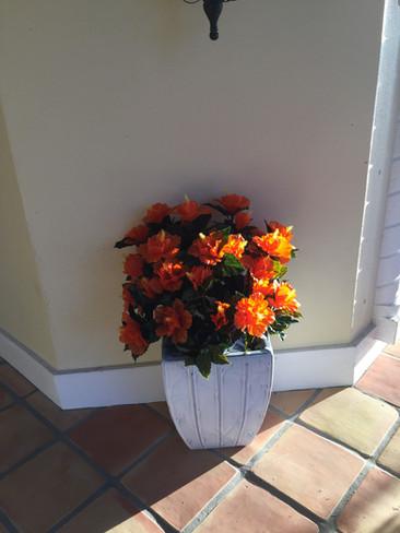 outdoor artificial plants 0066.JPG