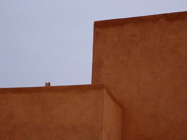 marrakech-mariehavard-badi3.jpg
