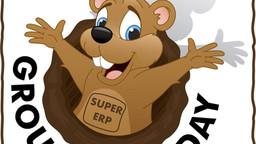 Groundhog ERP Day!