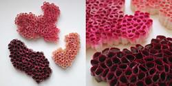 Corails rose