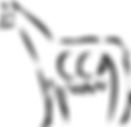 logo bigger.png