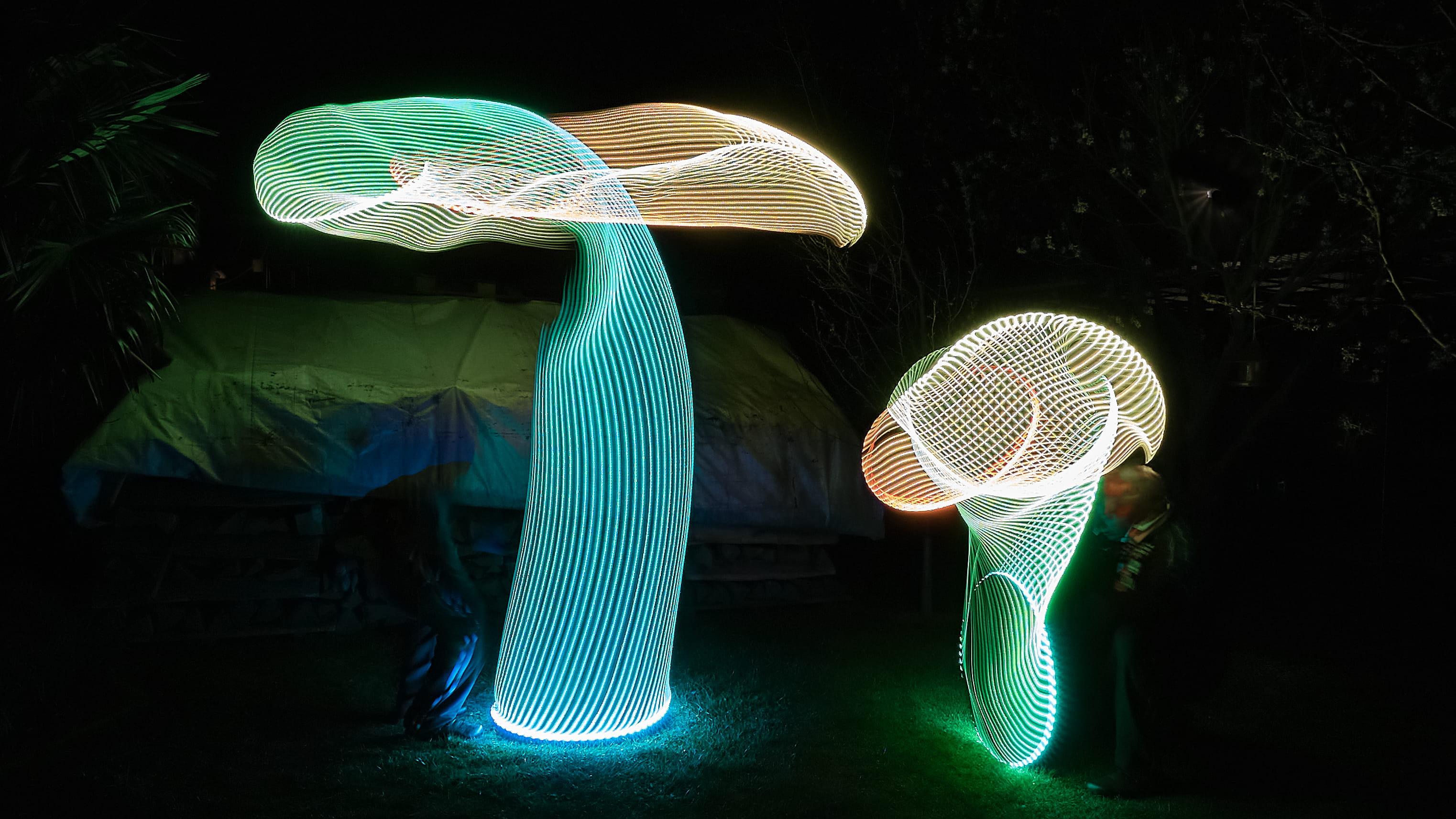 Light_Mushrooms