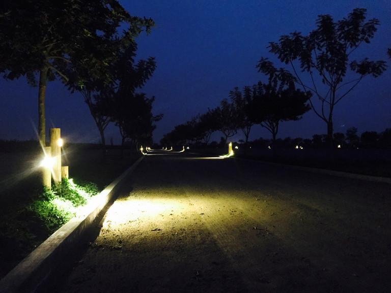 La iluminación de la alameda fue diseñada para evitar ser invasiva con el entorno.