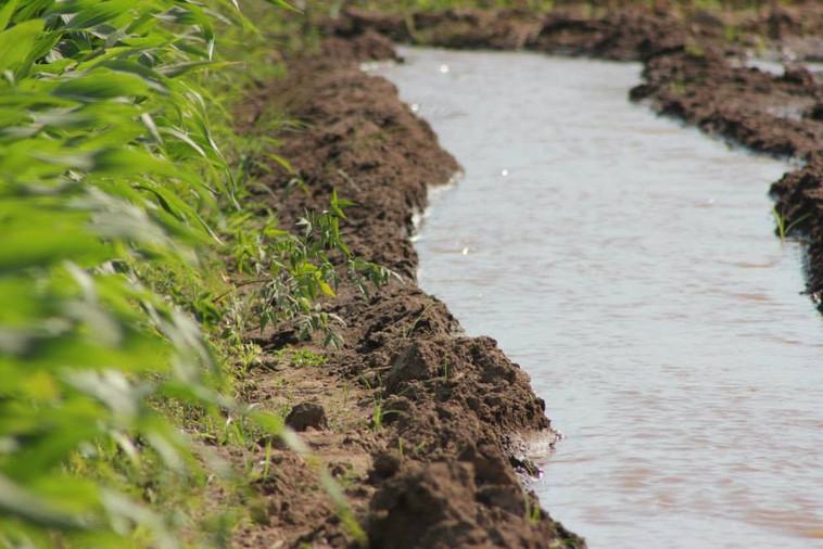 Agua todo el año en el valle de Cañete