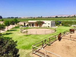 La zona de caballos incluye establos, picadero de entrenamiento, zona de lavado, almacén y una terraza para esperar mientras se ensilla