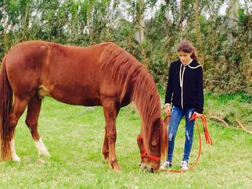 Darle a tus hijos la oportunidad de tener contacto con un caballo es invaluable.