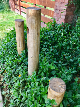 Las luminarias de la alameda se icorporaron a troncos para evitar ser intrusivas con el entorno natural.