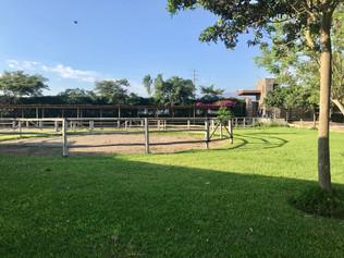 Nuestro picadero de entrenamiento para caballos