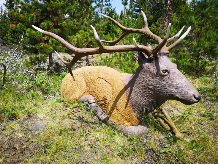 Pinned the Elk!