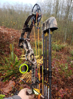PSE Xpedite bow