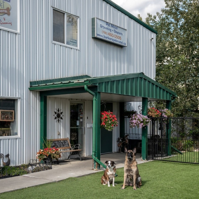 Barkers Pet Motel Best Dog Boarding Daycare St. Albert Edmonton Grooming
