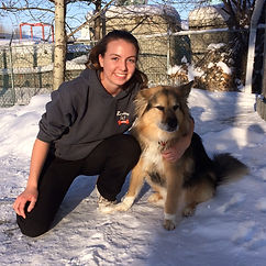 Dog Boarding Edmonton St. Albert Barkers Pet Motel