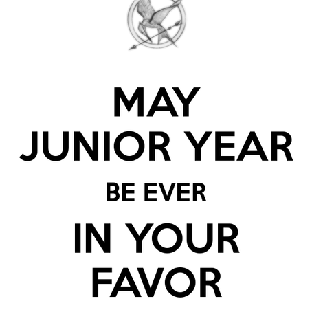 Why Junior Year is your most important year in the College Admission Process!