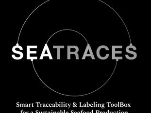 SEATRACES