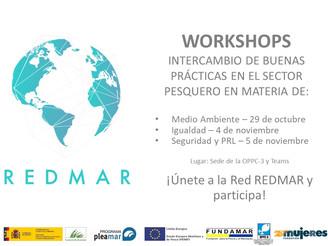 Workshops - Redmar III