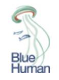 BlueHuman