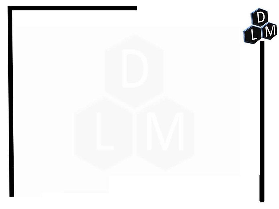dlm1.jpg