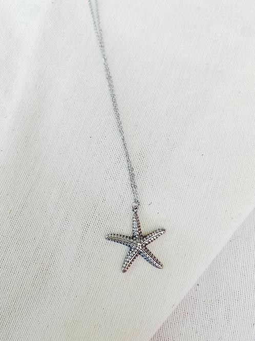 Estrella de mar plata