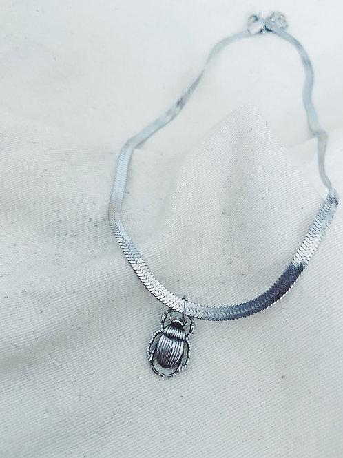 Beetle plata